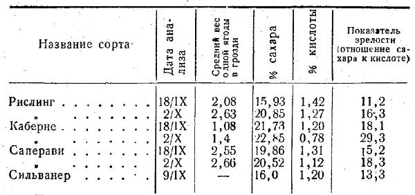 химический состав винограда